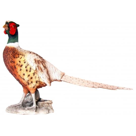 Decoratie beeld fazant 52 cm