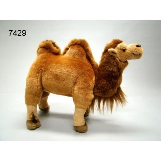 Kamelen knuffels 26 cm