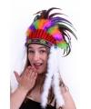 Gekleurde indianentooi