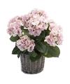Nep Hortensia plant roze in rieten mand kunstplant